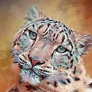 Colorful Snow Leopard by TerryIKON
