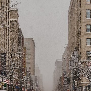 Snowy Day in Montreal by bareri