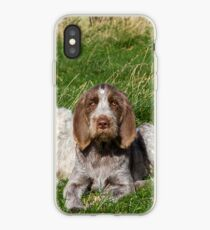 Italian Spinoni Orange and White Adult with Brown Roan Puppies Portrait iPhone Case