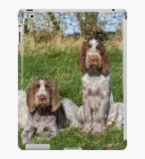 Italian Spinoni Orange and White Adult with Brown Roan Puppies Portrait iPad Case/Skin