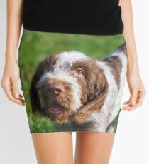 Italian Spinone Puppy Portrait Mini Skirt