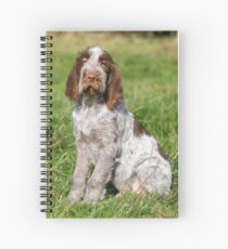 Brown Roan Italian Spinone Puppies Spiral Notebook