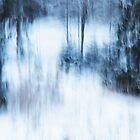 Artscape, snowy Black Forest by Imi Koetz