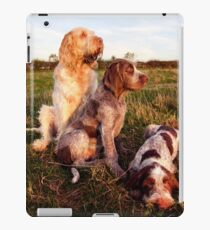 Italian Spinone Orange and White Adult with Brown Roan Puppies Portrait iPad Case/Skin