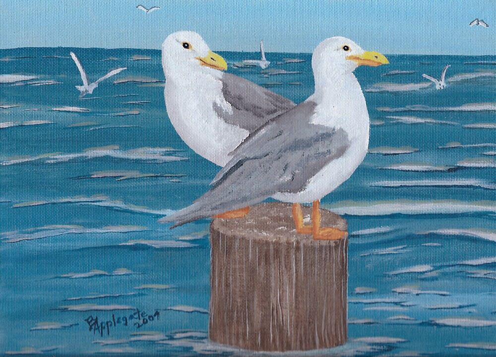 Quot Seagulls Oil Painting Quot By Barbara Applegate Redbubble