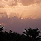 The sun beams by loiteke