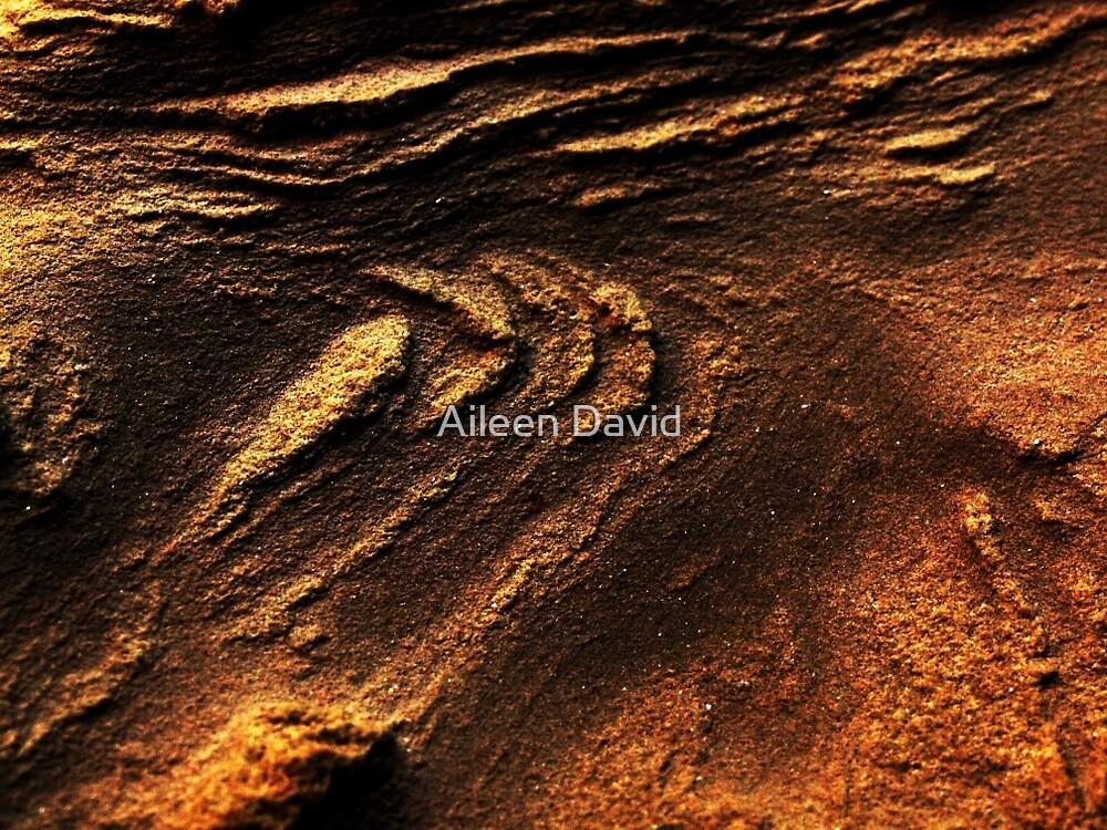 Hidden in the sand