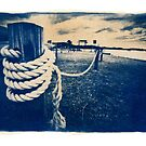 Cyanotype - Rope by David Amos