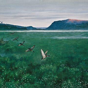 The Twelve Ducks - 12 Villender by dianegaddis