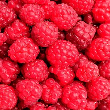 RASPBERRIES by IMPACTEES