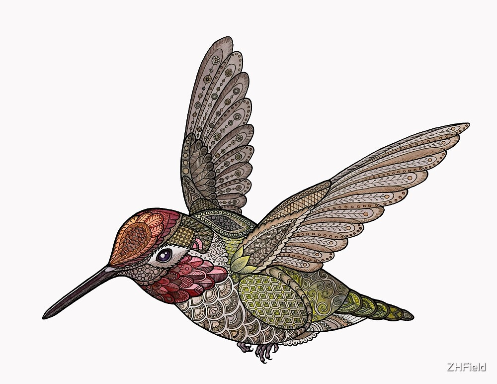 Hummingbird by ZHField