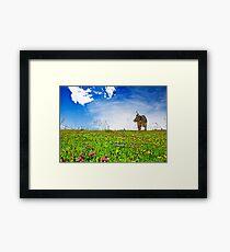 Swiss Meadow Framed Print