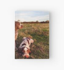 Italian Spinone Orange and White Adult with Brown Roan Puppies Portrait Hardcover Journal