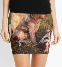 Italian Spinone Orange and White Adult with Brown Roan Puppies Portrait Mini Skirt
