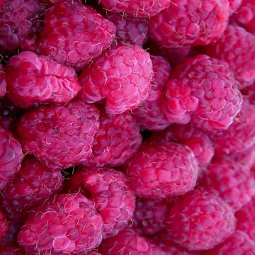 RASPBERRIES 2 by IMPACTEES