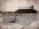 Old Winter Barn by Shelly Harris