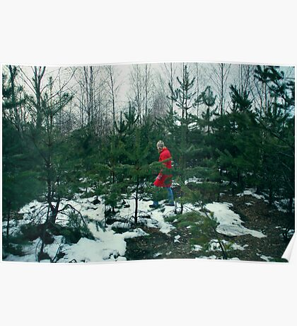 walk in-field among fir-trees Poster