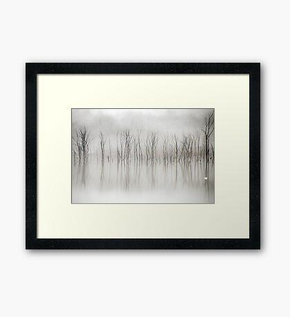 One Swan Framed Print