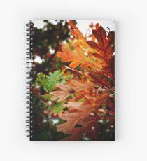 Oak Leaves In Autumn Spiral Notebook