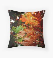 Oak Leaves In Autumn Throw Pillow