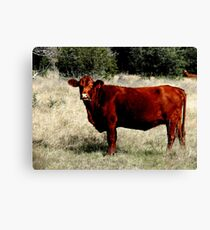 Miss Red Canvas Print