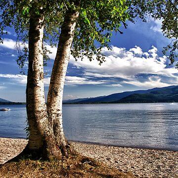 Swan Lake - Montana by kdxweaver