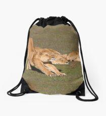Sleepy Lionesses Drawstring Bag