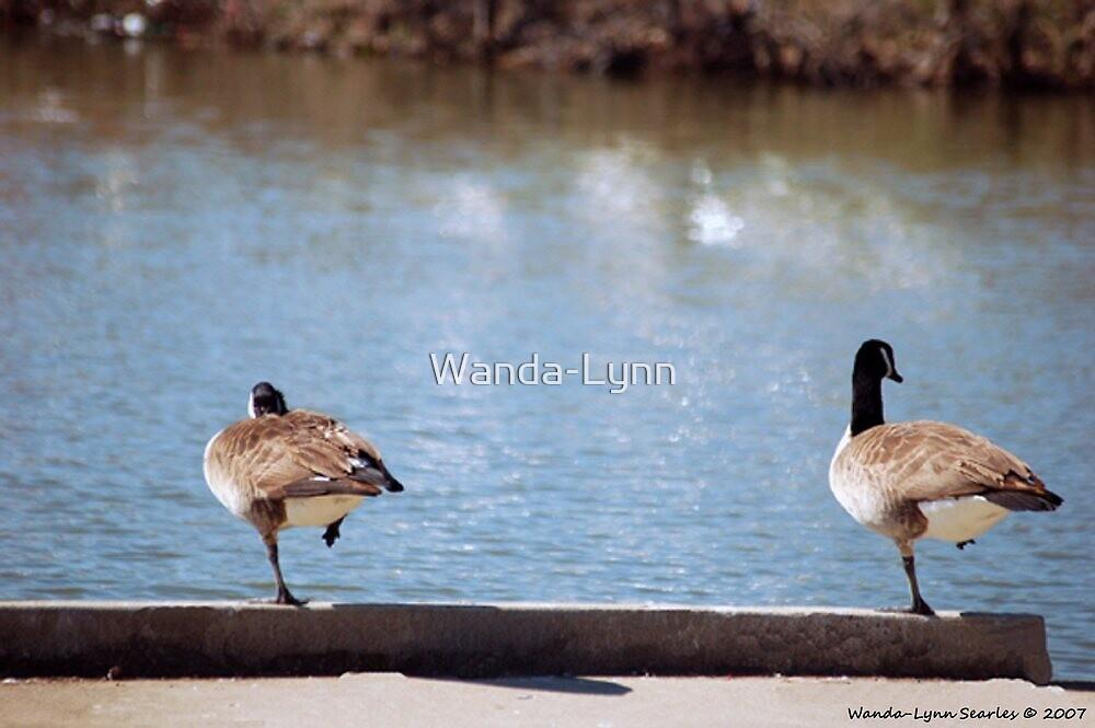 Simon Says: Raise your right leg! by Wanda-Lynn
