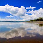 Floating Beach by Barbara  Brown