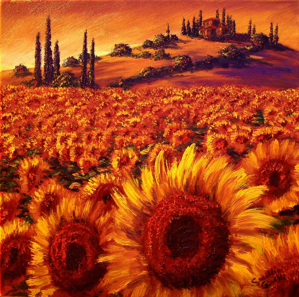 Wandering the Tuscan Sunflowers by sesillie