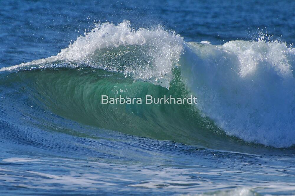 Summer Surf by Barbara Burkhardt