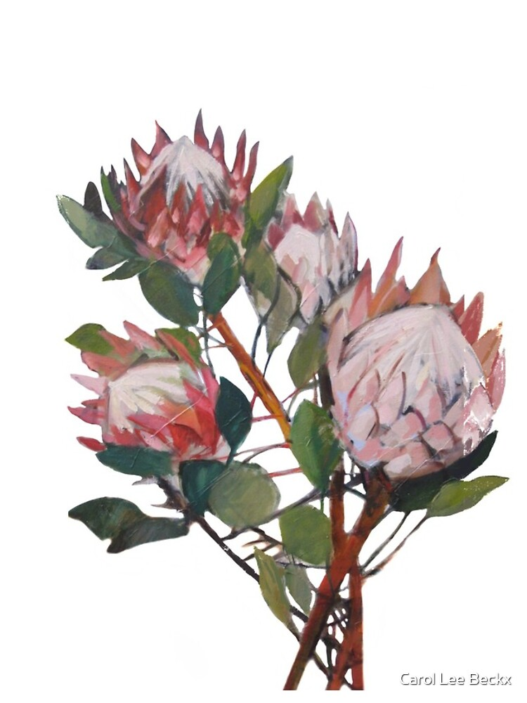 A Bunch of King Proteas  by Carol-Lee-Beckx