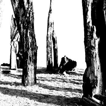 dark forest by stoekenbroek