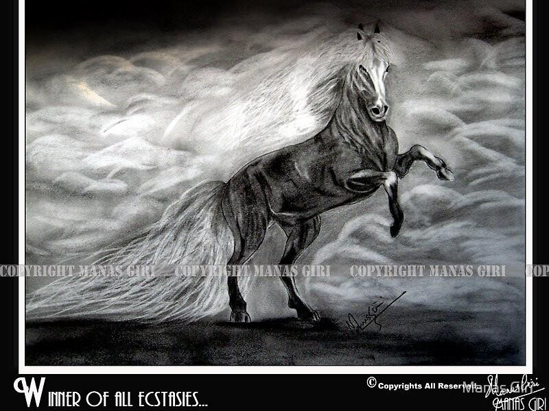 The Winner... by Manas Giri