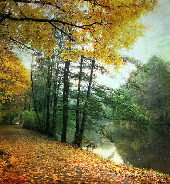 Peaceful Path by Jessica Jenney