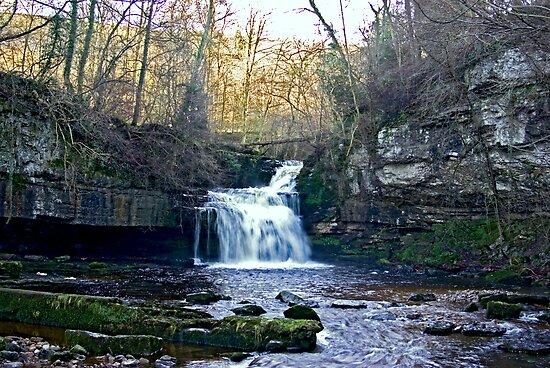 West Burton Falls by Trevor Kersley