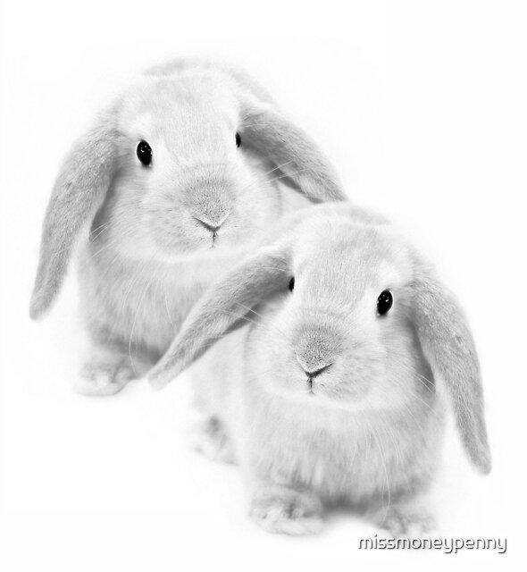Two little cuties by missmoneypenny