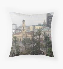a sprawling Chile landscape Throw Pillow