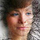 Blue Eyes by Sean Farragher