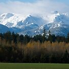 Comox Glacier with Autumn foreground by lgraham