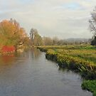 Mid-winter on the River Itchen below Winchester in winter from St Cross bridge, southern England by Philip Mitchell