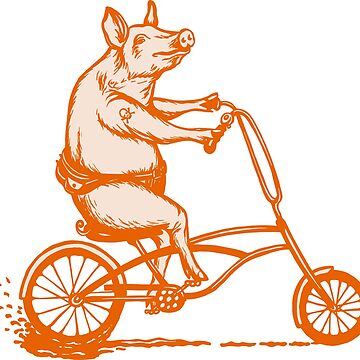 Pig on bike  by amelielegault