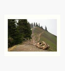 Alpine Ridge Art Print
