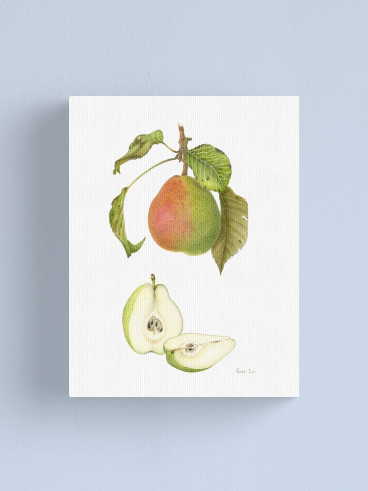 Alternate view of Forelle Pear Canvas Print