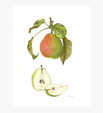 Forelle Pear Photographic Print