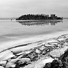 Hudson River Winter by Jaime Hernandez