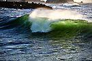 Green Pacific Wave by Sun Dog Montana