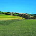 South Devon Country by Lesliebc