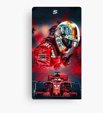 Lienzo S.Vettel