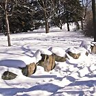 Snow on the rocks - Ottawa, ON Canada by Shulie1